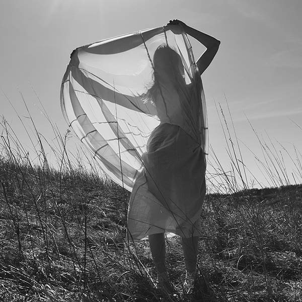 Sunbeam by Lindsay Ferris